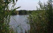 Am Baggersee der ehemaligen Ziegelfabrik