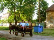 Kutschfahrt mit der Familie Roos