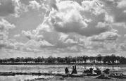 15.05.1944 Biled: Hanfindustrie, Auslegen von Hanfbündeln, am Hafen