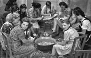 17.05.1944 Lovrin: Schüler der Banatia Temeschburg, Mädchen beim Kartoffelschälen